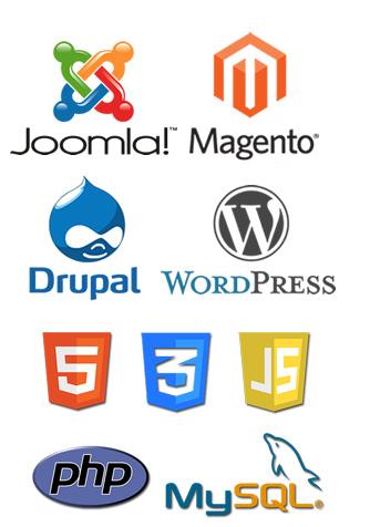 website development company in bhopal